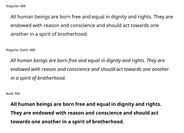 "A screenshot of the Noto Sans font in Regular 400, Regular Italic 400, and Bold 700, all with the text: ""All human beings are born free and equal in dignity and rights. They are endowed with reason and conscience and should act towards one another in a spirit of brotherhood."""